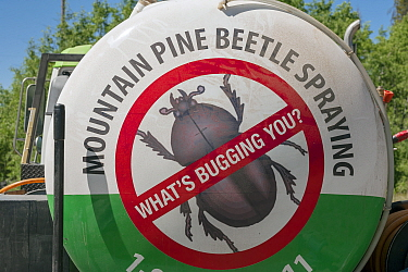 Mountain Pine Beetle (Dendroctonus ponderosae) eradication truck, Colorado