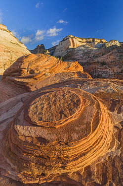 Sandstone formations, Zion National Park, Utah