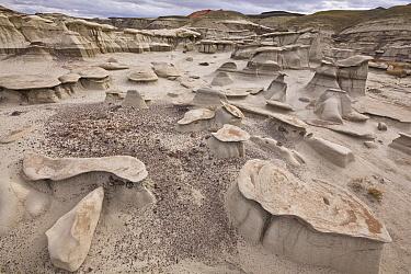 Toadstool hoodoo sandstone rock formations, Bisti Wilderness Area, New Mexico