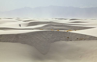Hikers among white gypsum sand dunes, White Sands National Monument, New Mexico
