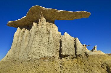 Mushroom hoodo sandstone rock formations, Bisti Wilderness Area, New Mexico