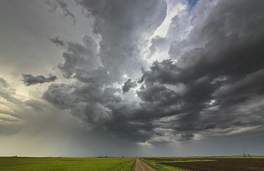 Storm clouds at sunset billowing over prairie, North Dakota