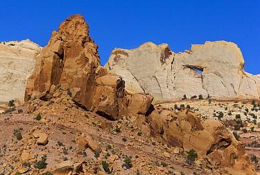 Massive sandstone arch, Capitol Reef National Park, Utah
