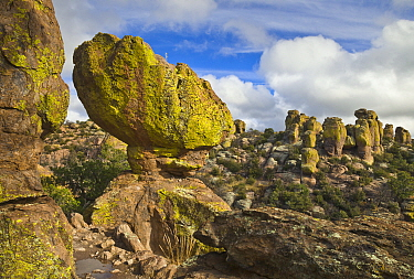 Rock formations, Chiricahua National Monument, Arizona