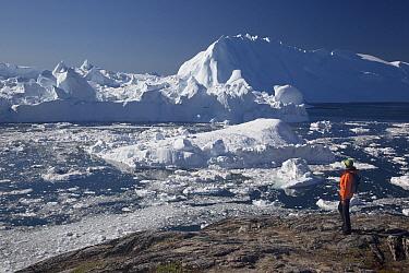 Tourist and icebergs, Ilulissat, Greenland