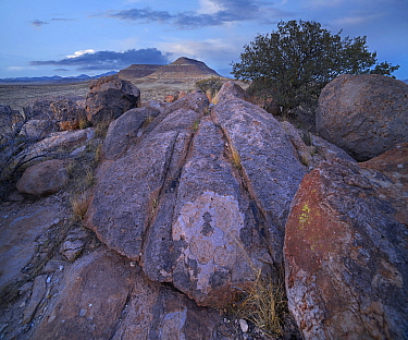 Rock formation, City of Rocks State Park, New Mexico