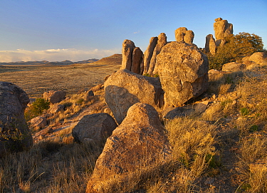 Rock formations, City of Rocks State Park, New Mexico