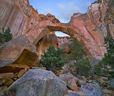 Rock arch, La Ventana Arch, El Malpais National Monument, New Mexico