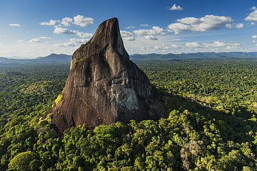 Bottle Mountain rising out of rainforest, Rupununi, Guyana