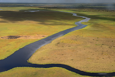River west of Georgetown, West Demerara Conservancy,  Guyana
