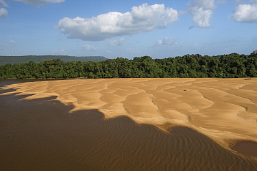 Sandbank in river, Essequibo River, Guyana