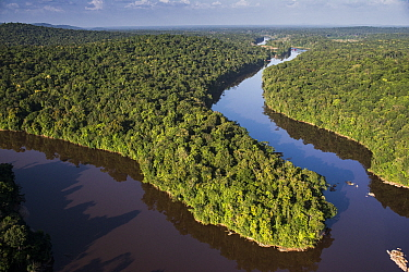 River in rainforest, Kaieteur Falls, Potaro River, Kaieteur National Park, Guyana