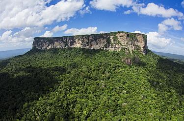 Ayangaik Mountain, Pacaraima Mountains, Guyana