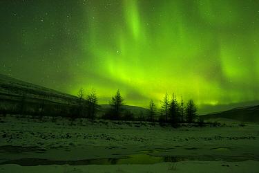 Aurora borealis over river, Putoransky State Nature Reserve, Putorana Plateau, Siberia, Russia