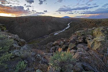 River valley, Rio Grande, Rio Grande del Norte National Monument, New Mexico