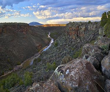 Rio Grande Wild and Scenic River, view from Sheep Crossing to Ute Mountain, Rio Grande del Norte National Monument, New Mexico