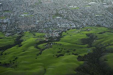 Urban sprawl encroaching on oak savanna, Bay Area, California