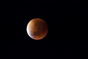 Lunar eclipse, Mana Pools National Park, Zimbabwe