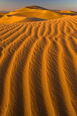Sand dunes, Mojave Desert, California