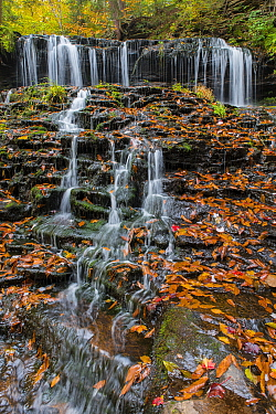 Waterfall in fall, Mohawk Falls, Kitchen Creek, Ricketts Glen State Park, Pennsylvania