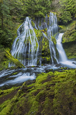 Panther Falls, Columbia River Gorge, Washington