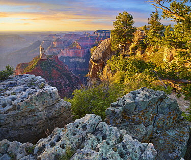 Mount Hayden from Point Imperial, North Rim, Grand Canyon National Park, Arizona