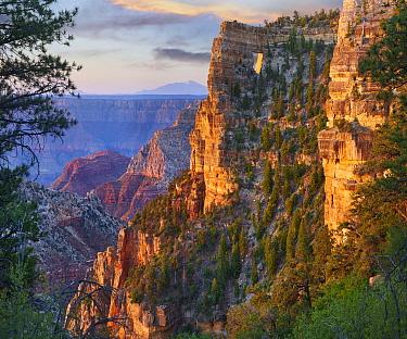 Canyon cliffs, The Window near Walhalla Overlook, North Rim, Grand Canyon National Park, Arizona
