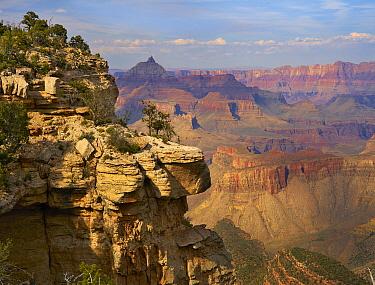 Canyon cliffs, Vishnu Temple from South Rim Trail near Yaki Point, Grand Canyon National Park, Arizona