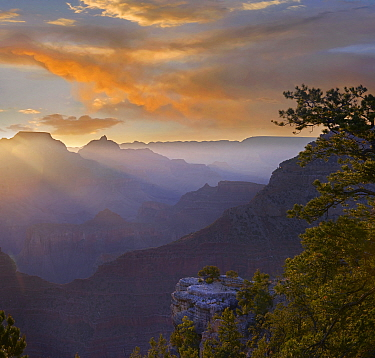 Sunrise at Yavapai Point with Vishnu Temple, Wotans Throne, Grand Canyon National Park, Arizona