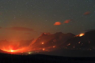 Forest fire under starry night sky, Glacier National Park, Montana
