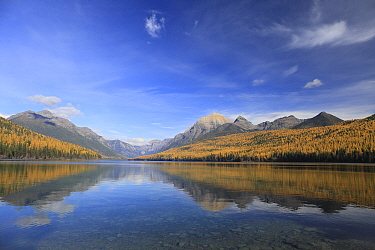 Lake in fall, Bowman Lake, Glacier National Park, Montana