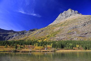 Mount Wilbur, Glacier National Park, Montana