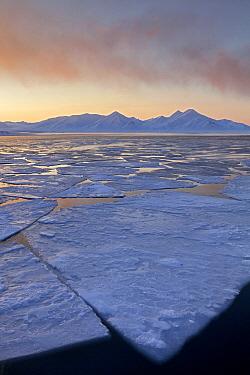 Ice floes and midnight sun, Svalbard, Spitsbergen, Norway