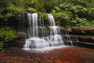 Waterfall in bamboo forest, Shunan Zhuhai National Park, Sichuan, China