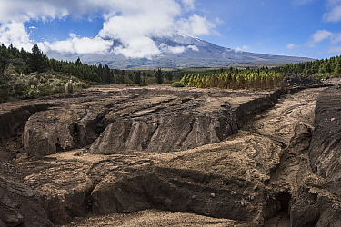 Dried mud flow caused by volcanic eruption, Cotopaxi Volcano, Cotopaxi National Park, Andes, Ecuador