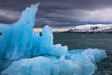 Blue drift ice in fjord, Svalbard, Norway