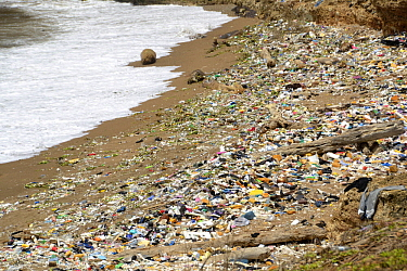Polluted beach, Dominican Republic, Caribbean