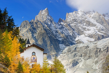 European Larch (Larix decidua) trees in autumn in the Mont Blanc massif. Small mountain church named NOTRE-DAME DE LA GUÉRISON in front of the famous mountain spire Aiguille Noir de Peutery, Italy
