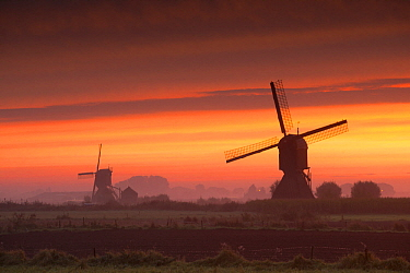 Traditional windmills at sunrise, Netherlands