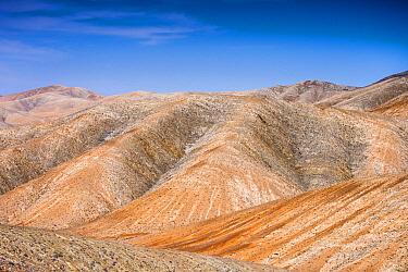 Rolling volcanic hills, Parque Rural de Betancuria, Fuerteventura, Canary Islands, Spain
