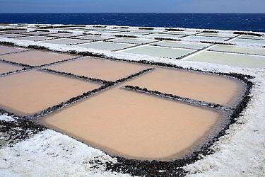 Salt production, Salinas Marinas de Feuncaliente, La Palma Island, Spain