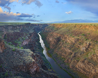 River in gorge, Rio Grande Gorge, Rio Grande del Norte National Monument, New Mexico