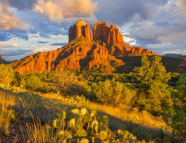 Rock formation, Cathedral Rock, Coconino National Forest, Arizona