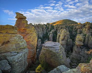 Hoodoo rock formations from Massai Point Nature Trail, Chiricahua National Monument, Arizona