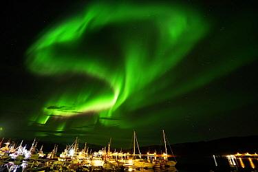 Aurora borealis in night sky over harbor, Norway