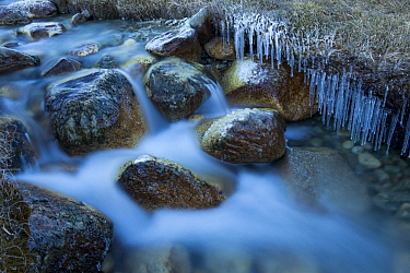 Creek with icicles, Sarychat-Ertash Strict Nature Reserve, Tien Shan Mountains, eastern Kyrgyzstan