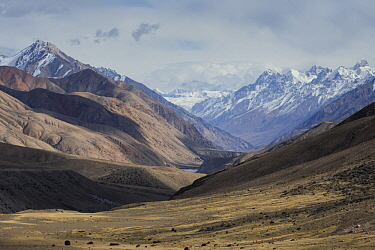 Valley in mountains, Sarychat-Ertash Strict Nature Reserve, Tien Shan Mountains, eastern Kyrgyzstan