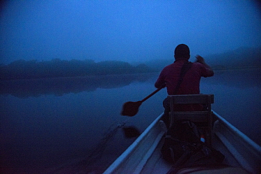 Guide paddling canoe at dawn, Amazon, Ecuador