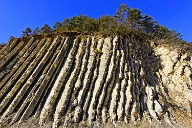 Erosion pattern in cliff, clay and limestone marl beds, La Serre de l'Ane, Alps, France