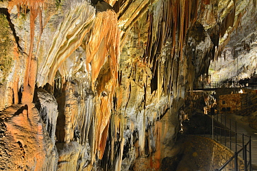 Stalagtites and stalagmites, Postojna Cave, Slovenia